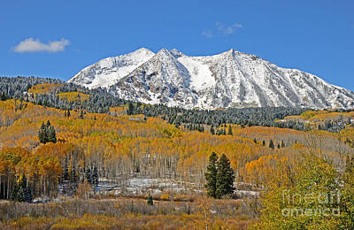 Photograph - Snowcapped Beckwith Peak by Kelly Black