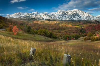 Huntsville Wall Art - Photograph - Snowcapped by Rory Wallwork