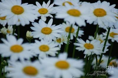 Photograph - Snowcaps by Lorelle Gromus