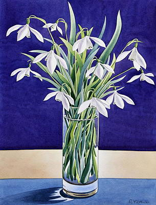 Flowers And Water Drops Wall Art - Painting - Snowdrops  by Christopher Ryland