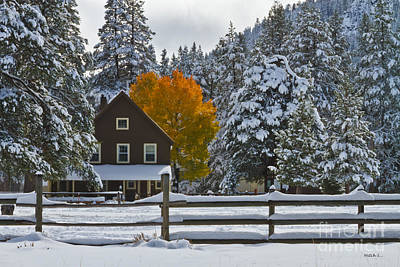 Snowed In At The Ranch Art Print