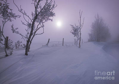 Ice Fog Photograph - Snowed In by Dan Jurak
