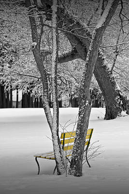 Photograph - Snowfall At Garfield Park With Yellow Park Bench No. 0963bw by Randall Nyhof