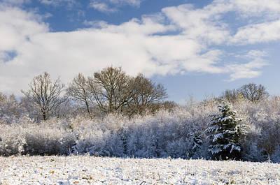 Photograph - Snowfall by Mick House