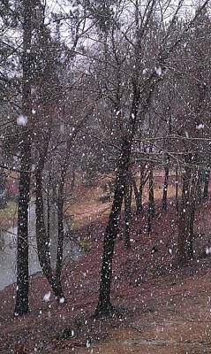 Photograph - Snowfall On Lake Trail by Kenny Glover