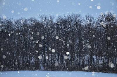 Snowfall Treeline Art Print