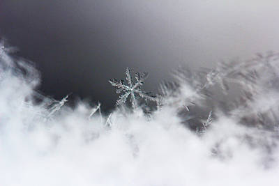 Beckylodes Photograph - Snowflake 2 by Becky Lodes