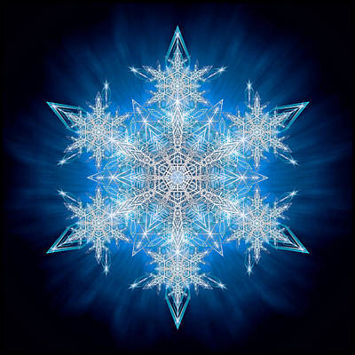 Photograph - Snowflake - 2012 - A by Richard Barnes