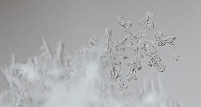 Beckylodes Photograph - Snowflake 6 by Becky Lodes
