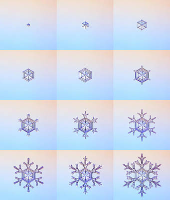 Ice Crystals Photograph - Snowflake Formation by Kenneth Libbrecht