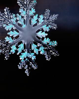 Photograph - Snowflake In Window 20471 by Jerry Sodorff