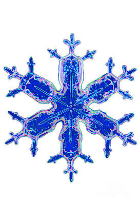 Photograph - Snowflake by Kent Wood