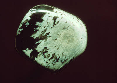 Snowflake Obsidian Art Print by Th Foto-werbung/science Photo Library