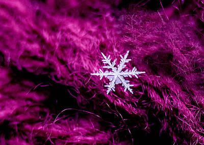 Snowflake On Magenta Art Print
