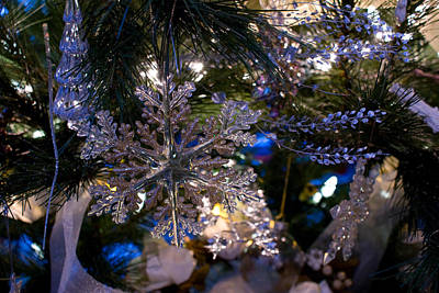 Photograph - Snowflake On The Tree by Joanne Smoley