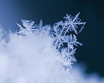 Snowflakes 4 Original by Jeff Klingler