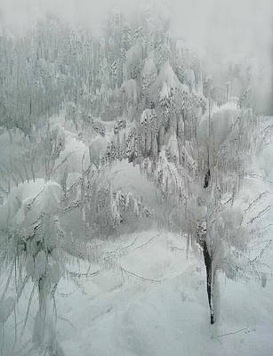 Photograph - Snowland by Kume Bryant