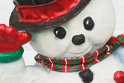 Photograph - Snowman by David Davis