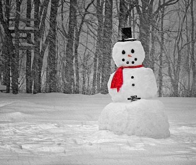 Snowman Art Print by Steven Michael