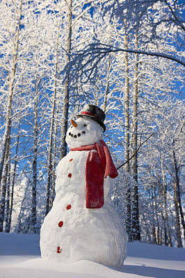 Christmas Holiday Scenery Photograph - Snowman With Red Scarf And Black Top by Kevin Smith