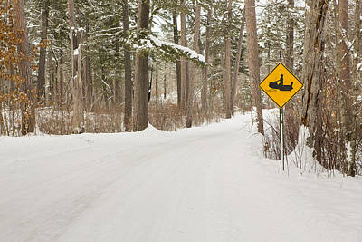 Itasca State Park Photograph - Snowmobile Crossing by Tim Grams