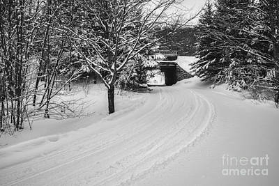 Photograph - Snowmobile Trails In New Hampshire by Glenn Gordon
