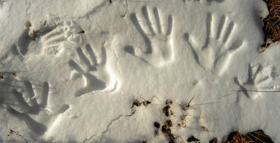 Photograph - Snowprints by Alistair Lyne