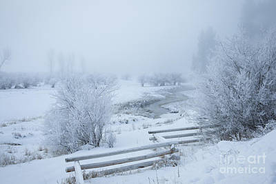 Photograph - Snowscape by Idaho Scenic Images Linda Lantzy