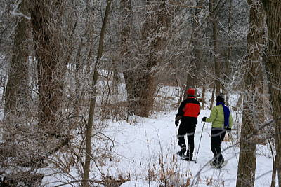Photograph - Snowshoeing In The Park by Kay Novy