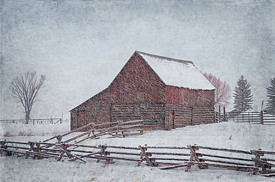 Photograph - Snowstorm At The Ranch 2 by Priscilla Burgers