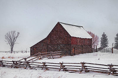 Photograph - Snowstorm At The Ranch by Priscilla Burgers