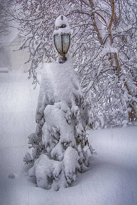 Photograph - Snowvember 2014 by Guy Whiteley