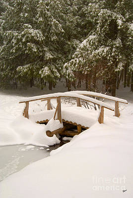 Photograph - Snowy Bridge by Alana Ranney