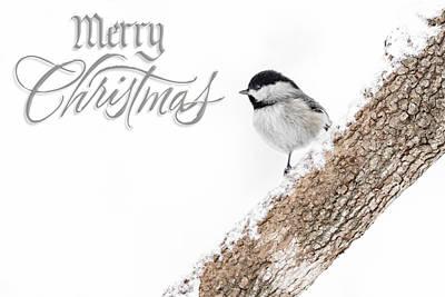 Snowy Chickadee Christmas Card Art Print