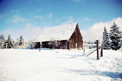 Photograph - Snowy Country Barn by Crystal Cox