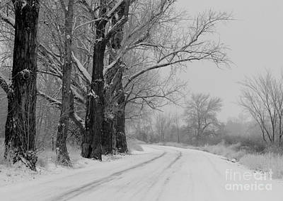 Snowy Country Road - Black And White Print by Carol Groenen