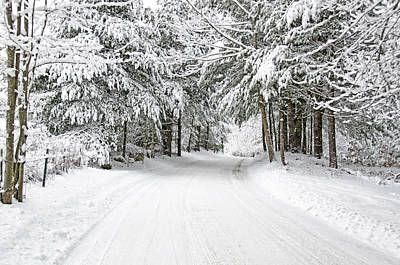Backroad Photograph - Snowy Country Road by Donna Doherty