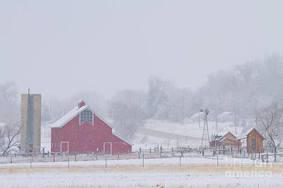 Photograph - Snowy Country Winter Day by James BO  Insogna