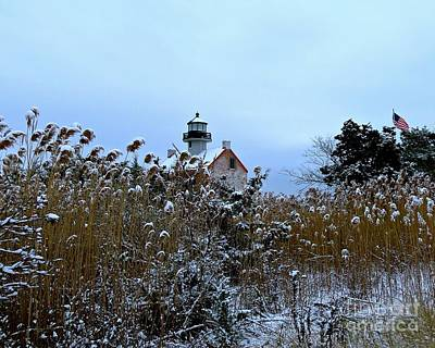 Photograph - Snowy Day At East Point Light by Nancy Patterson