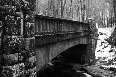 Wall Art - Photograph - Snowy Day by Daniel Amick