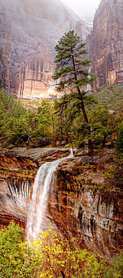 Photograph - Snowy Day In Zion by Darryl Wilkinson