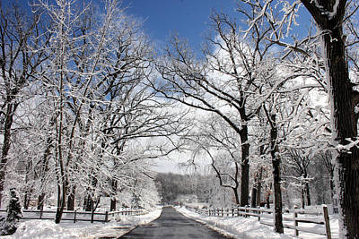 Snowy Roads Photograph - Snowy Day by Jackie Novak