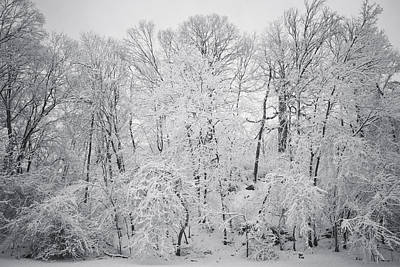 Photograph - Snowy Days by Scott Meyer