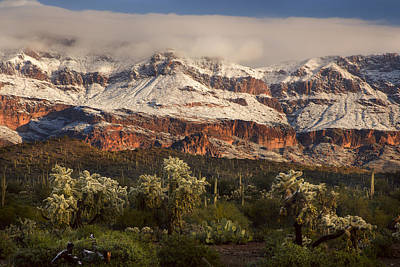 Photograph - Snowy Desert Mountain Range by Dave Dilli