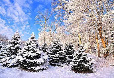 Digital Art - Snowy Dreams by Angel Cher