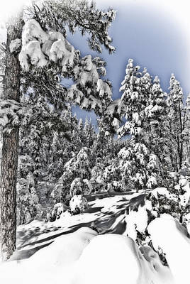 Snowy Dreams  Art Print by Saija  Lehtonen