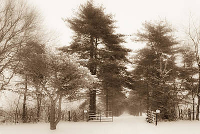Photograph - Snowy Driveway - Sepia Horizontal by Ron Pate
