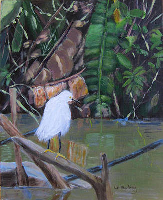 Painting - Snowy Egret In Costa Rica by Linda Feinberg