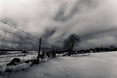 Photograph - Snowy Field by Beverly Cash