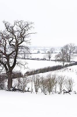 Snowy Fields Art Print